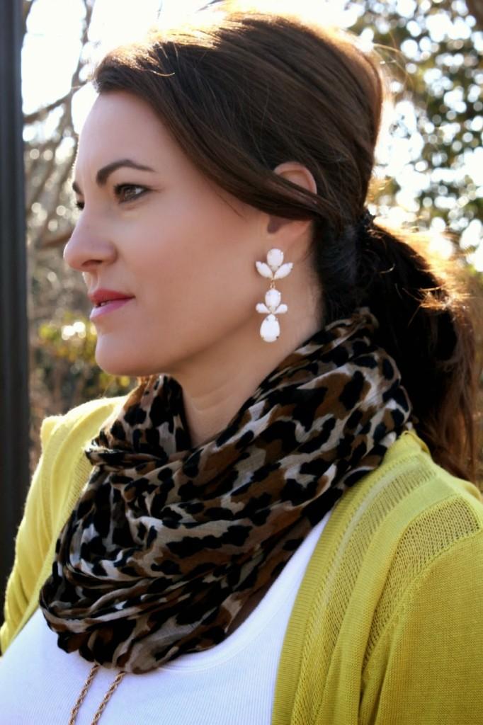 Forever 21 Earrings, Leopard Print Scarf